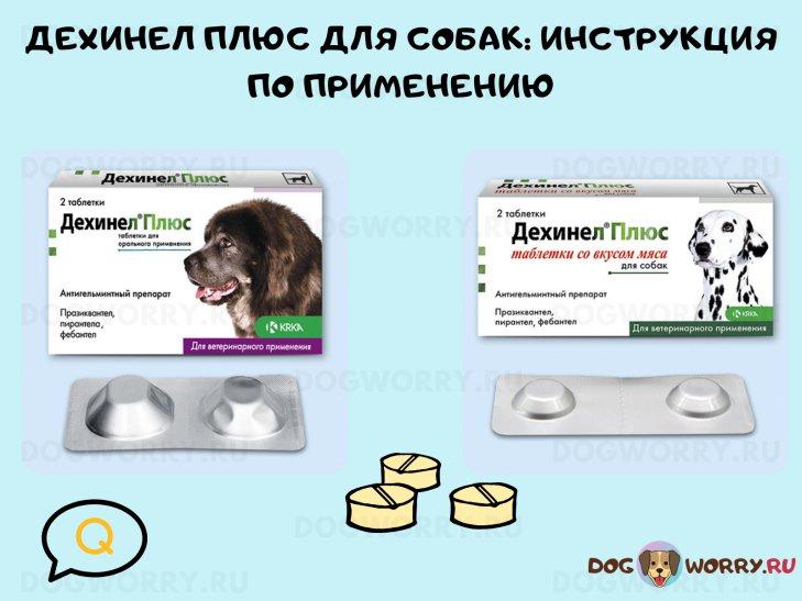 Инструкция по применению Дехинел Плюс для собак