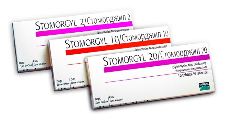 Инструкция по применению препарата Стоморджил для собак, его действие и расчет дозировки
