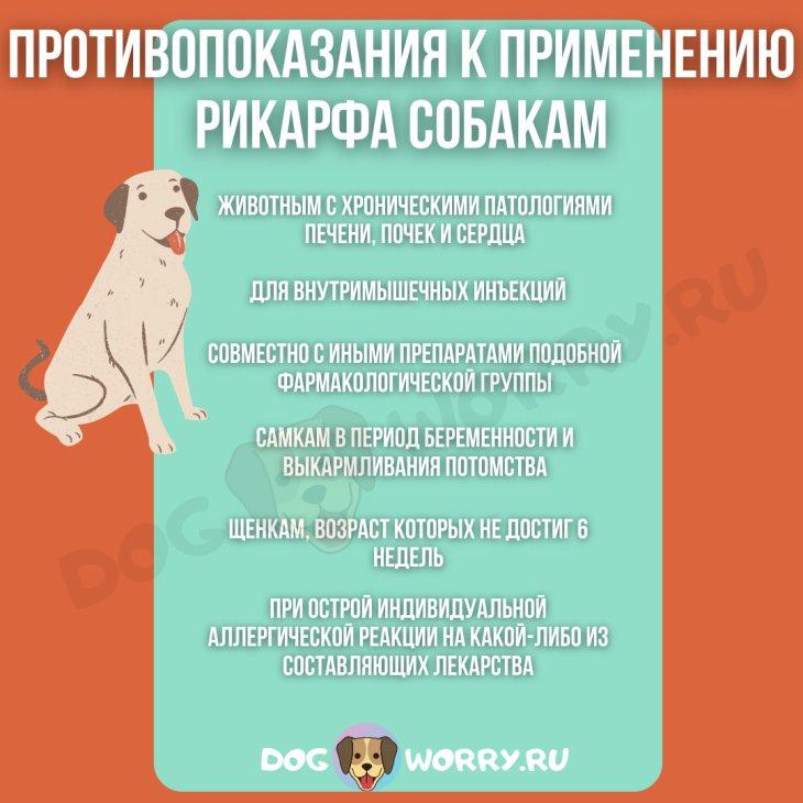 Противопоказания к применению рикарфа собакам