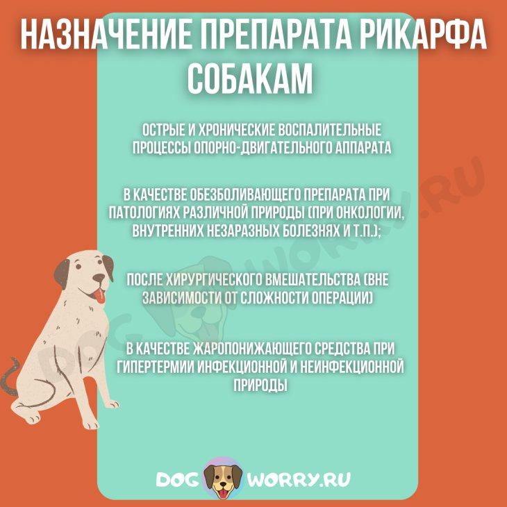 Рикарфа для собак: инструкция по применению и дозировке