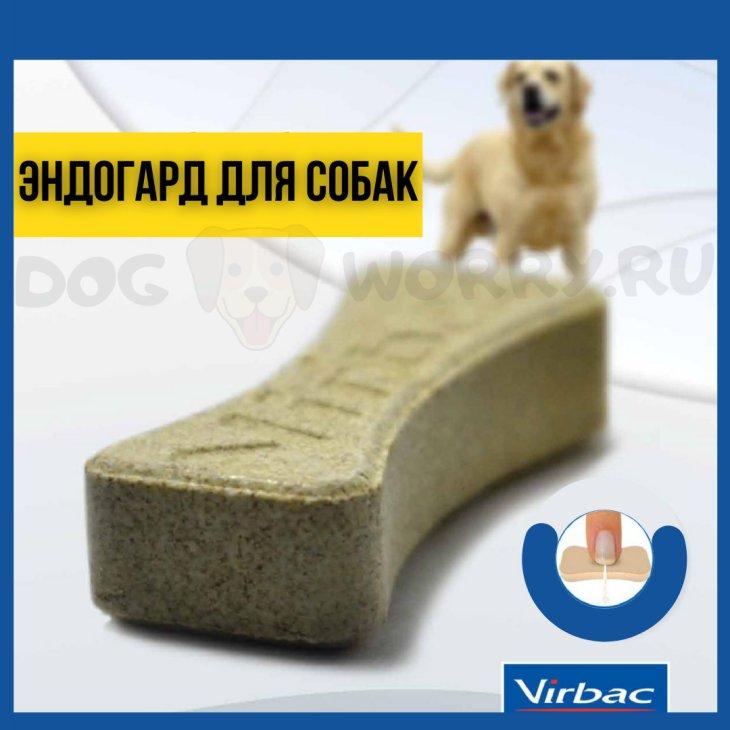 Эндогард для собак: инструкция по применению, цена, отзывы