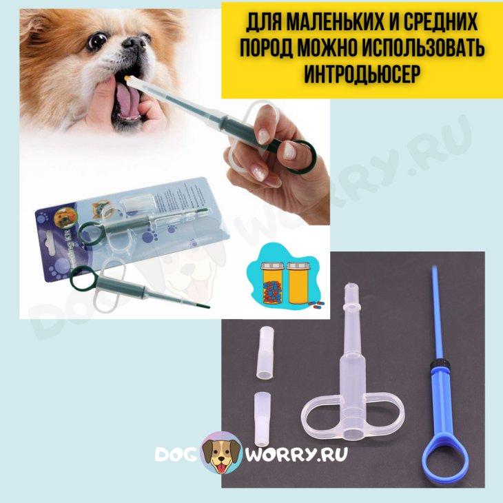 Как давать таблетки рикарфа собаке